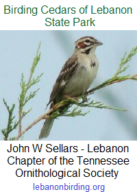 John W Sellars - Lebanon Chapter of Tennessee Ornithological Society