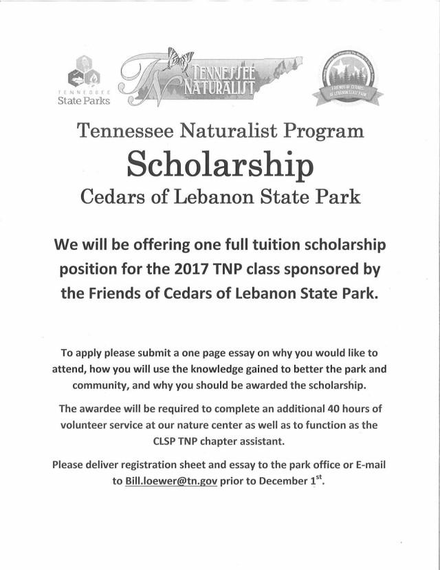 focol_tnp_scholarship_flyer